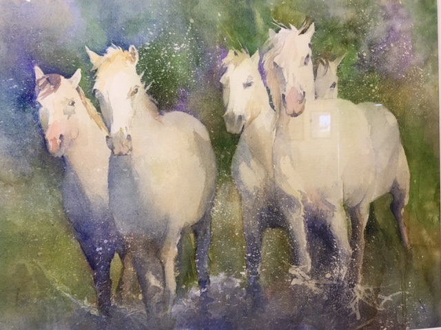 Water Horses Susan Winslow