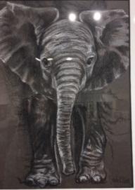 Baby Elephant - Victoria Killeen